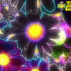 Neon Flower Background 4k