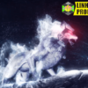 Wolf Logo Intro